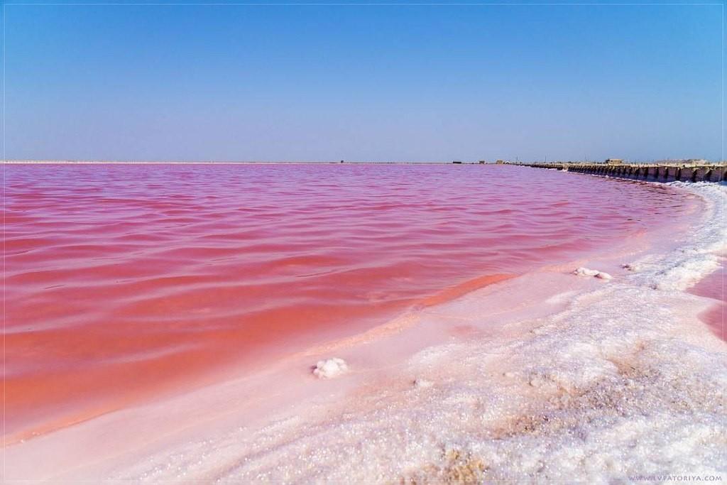 розовое озеро фото крым чашу выложить сметану