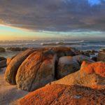 ostrov-tasmania_4