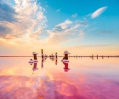 Розовое Сасык-Сивашское озеро. Крым
