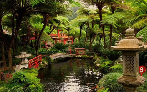 Монте Палас — Тропический Сад (Фуншал, Португалия)